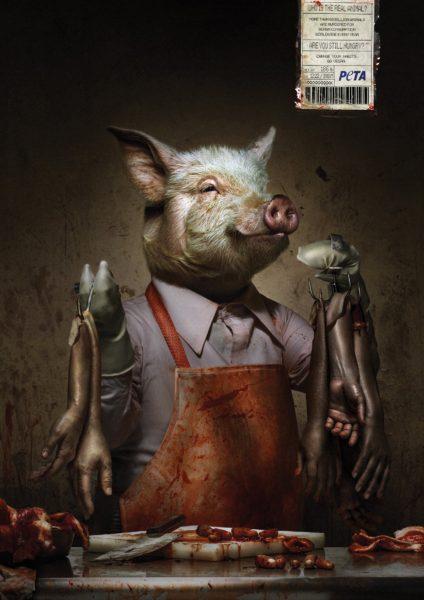 porc-peta
